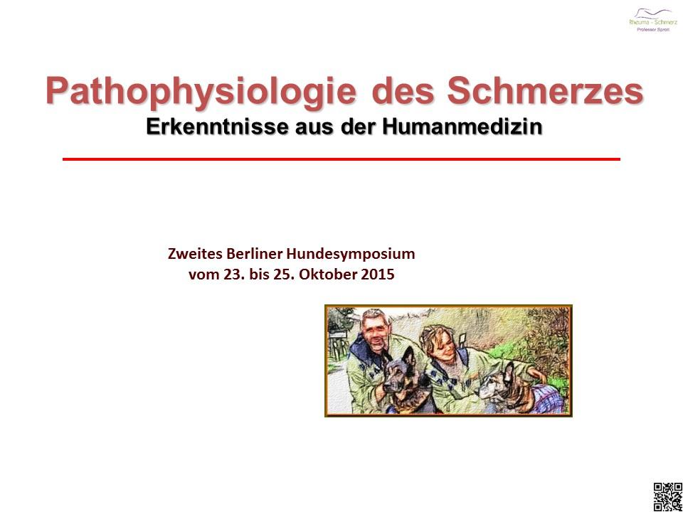 Pathophysiologie des Schmerzes aus Sicht der Humanmedizin